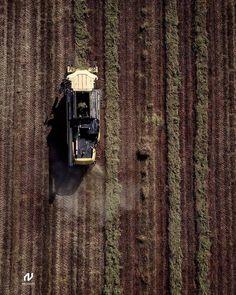 Ecopharm Oregano #farming #🇬🇷 #greece #agriculture #farmingphotos #farm #farmer #farmlife  #agricultureworldwide #agriculture_global…