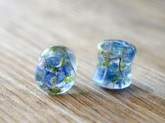00g 10mm blue flower plugs real floral ear plug real flower tunnel Unique tunnels Unusual resin plugs 00 gauge Earrings resin plug earrings by JEWELRYandPLEASURE on Etsy