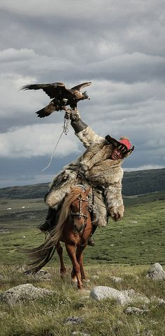 """""""The Art of Eagle-Hunting"""" by Lisa Vaz, Portugal   19 Glorious Photos From Entrants To This Year's Sony World Photography Awards"""