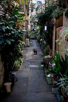Kita city, Tokyo