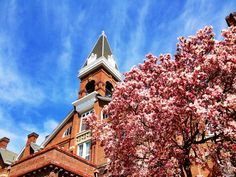 """April 30, 2013: """"Parting Glance."""" Luke Braland, a senior electronic media major, plans to graduate in May. He shared this photo with the message: """"Really taking my time to smell the flowers and enjoy my final weeks at Drake University."""""""