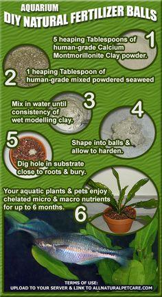 DIY Natural Fertilizer Balls for Aquarium Plants (Infographic)