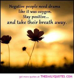 negative people start drama by bringing their negativity with them and trying to bring everyone else around the down. negative people love to start drama by making rude, cruel, hurtful remarks and by being snarky and sarcastic. Great Quotes, Quotes To Live By, Funny Quotes, Inspirational Quotes, Witty Quotes, Motivational Quotes, Awesome Quotes, Quotable Quotes, Daily Quotes