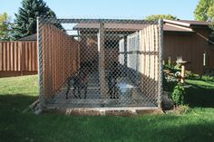 Building a Dog Run | How To Build the Perfect Dog Kennel - Gun Dog Magazine
