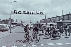 Rosariumplein