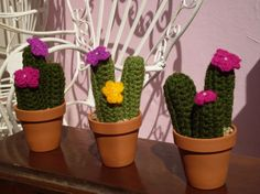 Amigurumi Cactus Tejido A Crochet Regalo Original : G  cac craft cacti