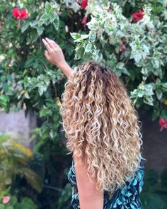 Ok seeing this picture until I was impacted by the growth of my hair. Ÿ # Blonde Curly Hair growth hair impacted picture Dyed Hair Ombre, Dyed Hair Pastel, Ombre Curly Hair, Curly Hair Styles, Natural Hair Styles, Blonde Curly Hair Natural, How To Curl Short Hair, Curly Wigs, Hair Lengths