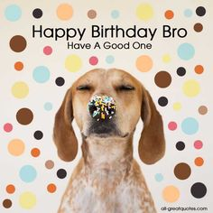 Happy Birthday Cards Happy Birthday Bro http://www.all-greatquotes.com/