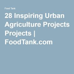 28 Inspiring Urban Agriculture Projects | FoodTank.com