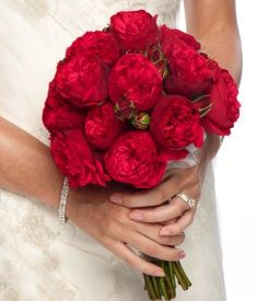 these are the red garden roses that i was telling you about - Red Garden Rose Bouquet