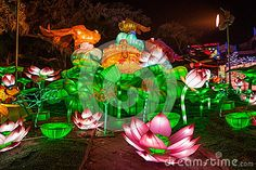 Festival de lanterne international de dinosaure de Zigong