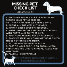 What to do if your pet has gone missing – 8ight Author and Animal Communicator Husky Rescue, Emergency Vet, Pet Vet, Feral Cats, Has Gone, Poster On, How To Take Photos, Your Pet, Dog Cat
