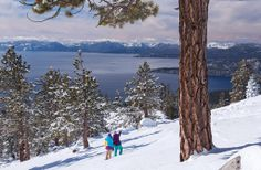 The 8 Best Ski Resorts Even If You Hate Skiing Hyatt Regency Lake Tahoe Where: Incline Village, NV Click through to find out why it's perfect for skiiers and non-skiiers! Lake Tahoe Vacation Resort, Nevada Desert, Incline Village, Best Ski Resorts, Best Skis, Ski And Snowboard, Summer Activities, Skiing, Regency