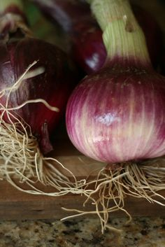 Plant your onion seeds now!