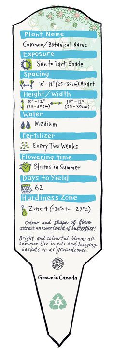 FYI; ANATOMY OF A PLANT LABEL; Learn to read the essentials before purchasing and planting