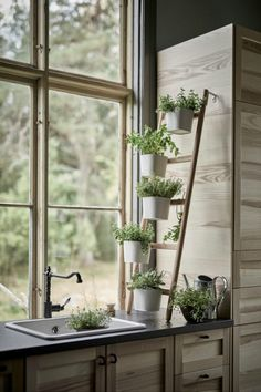 10 Tremendous Herb Gardens for Your Kitchen - Top Dreamer