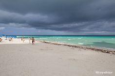 Casablanca on the Ocean Hotel (Miami Beach, Florida) - Hotel - Opiniones y Comentarios - TripAdvisor
