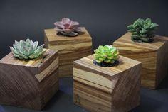 Wood Box by Goosucc Material - Oak