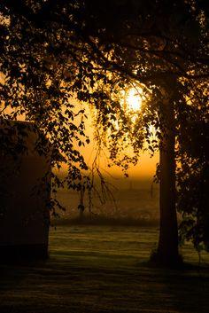 Golden hour | by Infomastern