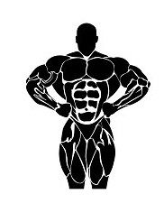 Bodybuilding, power lifting concept isolated on white background, vector, illustration Bodybuilding Logo, Bodybuilding Pictures, Anatomy Drawing, Guy Drawing, Birthday Banner Background, Crossfit Shirts, Gym Logo, Gym Motivation Quotes, Gym Design