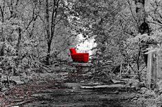 Alone  http://www.facebook.com/TakacsGyulaFoto