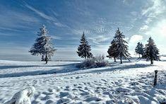 Zimy, Krajina, Sníh, Příroda, Horizont Nature Wallpaper, Winter Snow, Monet, Free Photos, Budapest, Winter Wonderland, Pictures, Photography, Outdoor