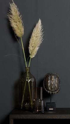 Pluimen! Interior Styling, Interior Design, Goth Home, Hallway Decorating, Utrecht, First Home, Home Decor Inspiration, Dried Flowers, Living Room Decor