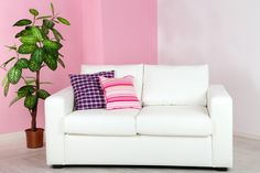 9 Modern Couch Styles To Decorate Your Home - Vivid Cleaning Clean Couch, Modern Couch, Accent Pieces, Sectional Sofa, Decorating Your Home, Couch Cleaning, Cleaning Tips, Love Seat, Upholstery
