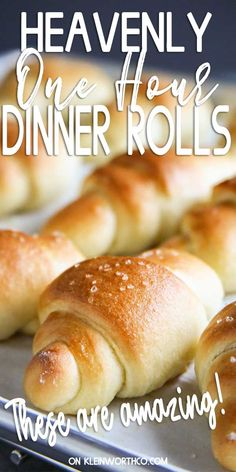 Heavenly One Hour Dinner Rolls that are so light & fluffy. Delicious & buttery they're perfect for holidays but easy enough for every night of the week. Easy Gravy Recipe, Savory Bread Recipe, Bread Recipes, Dinner Recipes Easy Quick, Delicious Dinner Recipes, Easy Dinners, Easy Recipes, Holiday Side Dishes, Side Dishes Easy