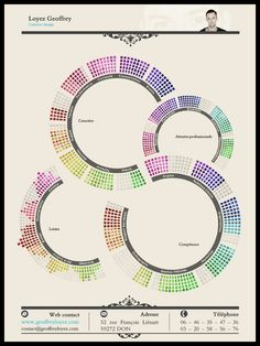 Geoffrey Loyez resume in infographic style