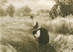 Early Morn, Alfred Stieglitz, United States Photogravure. From The Photographic Times 1898. Atelier Photochrome Engraving Company (New York City)
