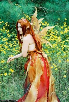 Autumn Fairy » Firefly Path