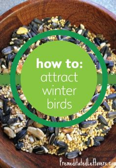 Keep beautiful birds stopping by your window even in winter with these great DIY tips.
