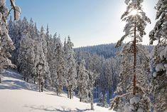 Rokualla voi retkeillä ympäri vuoden. Patikoinnille, maastopyöräilylle ja hiihdolle on omat merkityt reittinsä. (Kuva Hannu Kivelä). Outdoor, Geology, Outdoors, Outdoor Games, The Great Outdoors