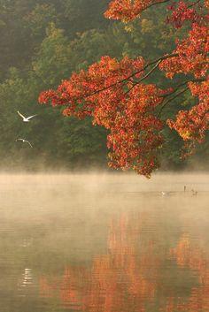 Photos de Paysages  PHOTO PAYSAGE.COM