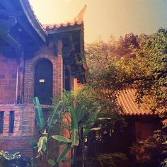 """Taiwan, Sinpu Township, iphone 6 + pixlromatic"""