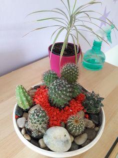 Terrarium, Succulents, Flowers, Plants, Home Decor, Homemade Home Decor, Terrariums, Flora, Succulent Plants