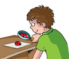 ¿Cómo ayudarlos a desarrollar la habilidad de observar?