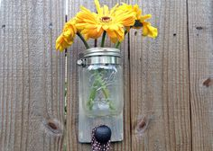 Mason Jar with Knob Mason Jar Planter, Mason Jar Vases, Kitchen Organization, Knob, Apron, Glass Vase, Hanger, Planters, Canning
