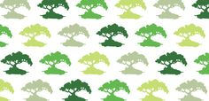 bonsai by Aimee Wilder