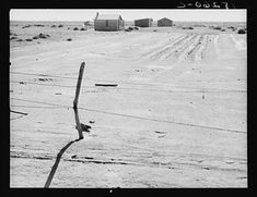 Abandoned farm in the Dust Bowl. Coldwater District, near Dalhart, Texas. 1938 (b film nitrate neg. Vintage Wall Art, Vintage Walls, Dorothea Lange Photography, Dust Bowl, Migrant Worker, Texas History, Documentary Photographers, Historical Maps, Photo Archive