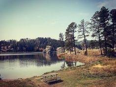 Custer State Park. #custerstatepark #southdakota #dakota #sd #travel #travelphotography