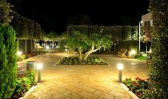 Well-designed landscape lighting not only makes your home and yard more appealing, it provides improved security and safety. Choose among various lighting systems to fit your needs. Lighting System, Landscape Lighting, Irrigation, Safety, Sidewalk, Yard, Fit, Plants, Blog