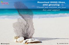 6000 Likes and growing!! Thank you so much for this love and support... Love you all!