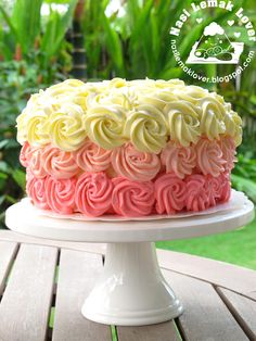 Nasi Lemak Lover: Pink Ombre Cake with Rosette Swiss Meringue Buttercream