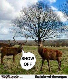 Thursday humor – When chuckle O-clock strikes you | PMSLweb
