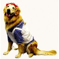 Raggedy Ann Pet Costume  Product #: WC1122