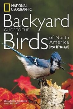 National Geographic Backyard Guide to the Birds of North America National Geographic Backyard Guide to the Birds of North America
