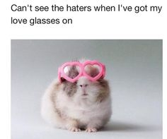 Can't see t6he haters when I've got my love glasses on.   <3  :) So awesome I had to post!!