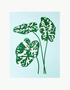 Claire Nereim Hilo Beauty Print | Dream Collective